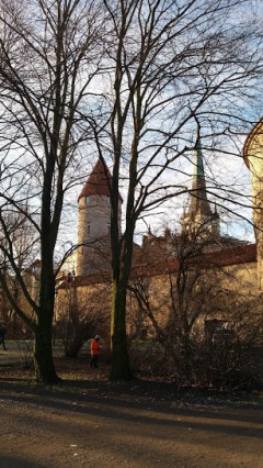 Tallinn 21